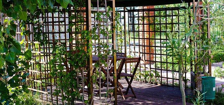 От 3 дней отдыха в июле с бассейном и завтраками в гостиничном комплексе «Альянс» в Коблево