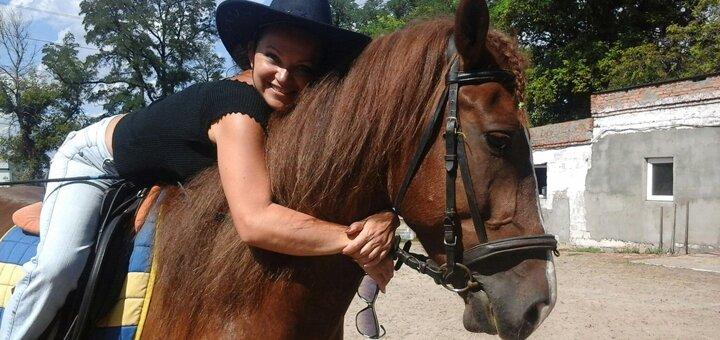 Скидка 50% на прогулку по парку на лошади или пони от конного клуба «Конный дворик»