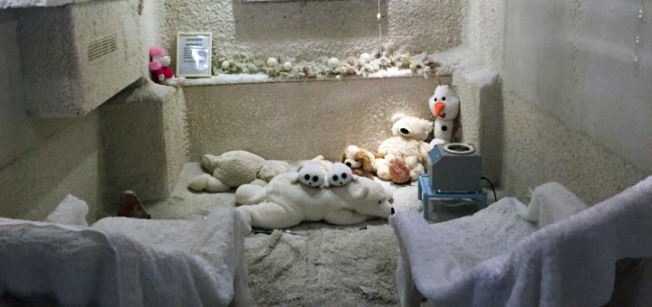Программа детоксикации организма в оздоровительном центре «Дана-Вита»